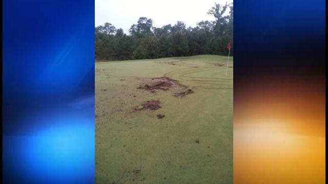 Golf course damage 2