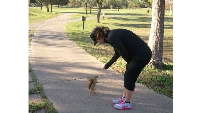 Squirrel Watch, Woman Feeding Squirrel
