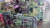 VIDEO: Would-be thief hides python in pants at pet shop