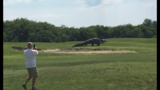 VIDEO: Large gator spotted roaming golf course