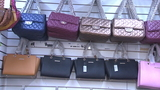 Coach sues local store over knockoffs