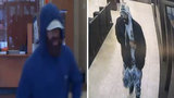 FBI, HPD looking for bearded bank bandit