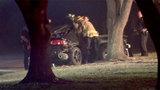2 killed when car hits tree in southwest Harris County