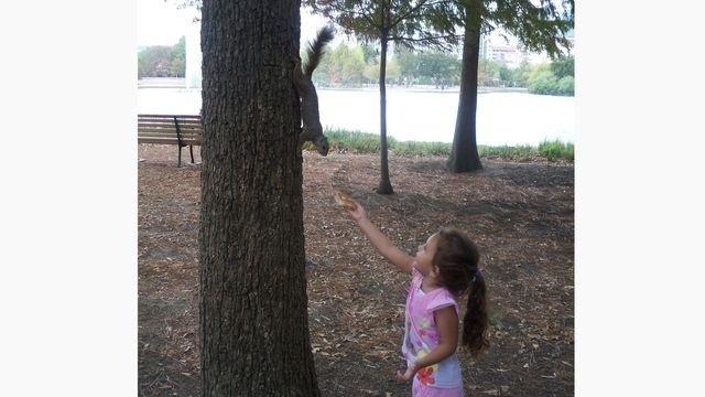Squirrel Watch, Girl Feeding Squirrel 05-31-12