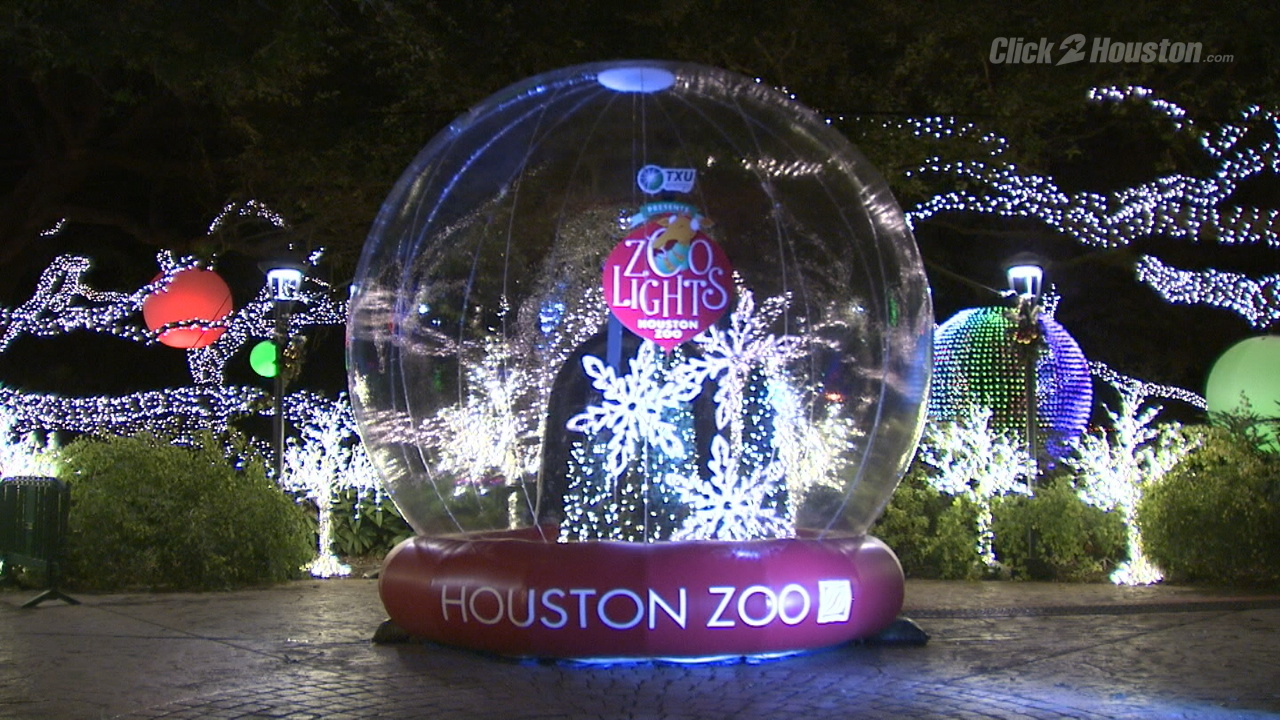 Image result for houston zoo lights