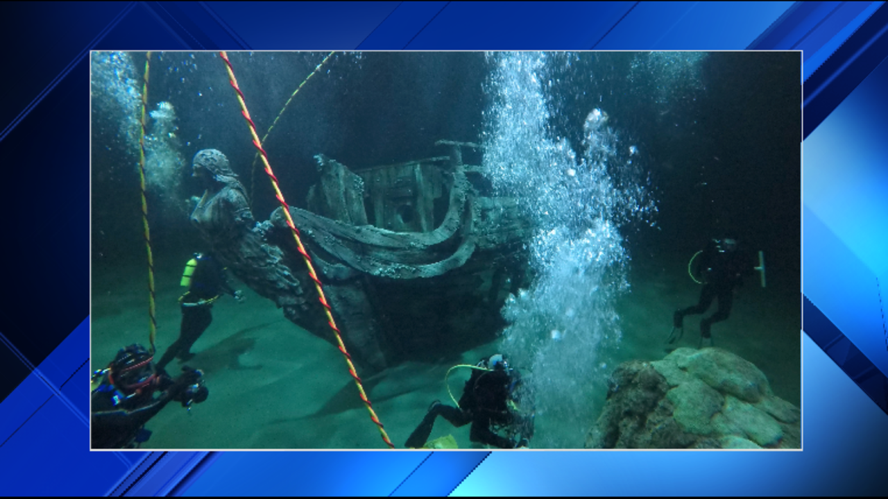 Moody Gardens Reveals First Glimpse At Caribbean Exhibit