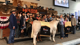 15-year-old named grand champion at Junior Market Steer Auction