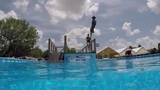 Couple builds dock-diving training facility at their Brookshire home