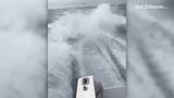 Video of shark being pulled by boat at high speed