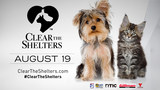 Clear The Shelters held in Houston