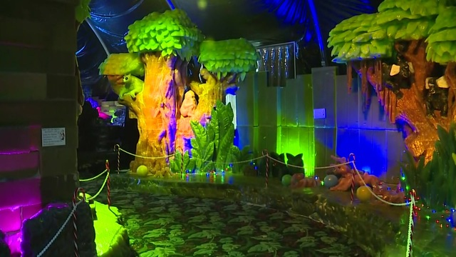 Go inside Moody Gardens\' holiday display: Rainforest Holiday
