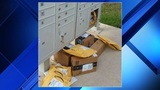 5 ways to avoid package theft this holiday season