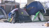 Organizations survey Houston's homeless population