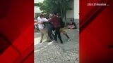 Video surfaces of Parkland suspected shooter fighting at school
