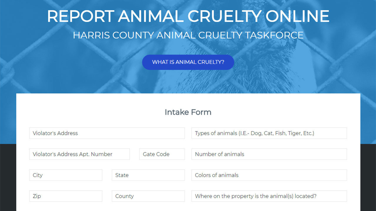 Animal abuse task force, hotline, website launched in Harris