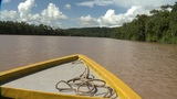 Watch 'Saving Wildlife: From Houston to Borneo' on KPRC2