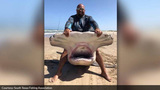Huge hammerhead shark caught by Texas man along Padre Island National Seashore