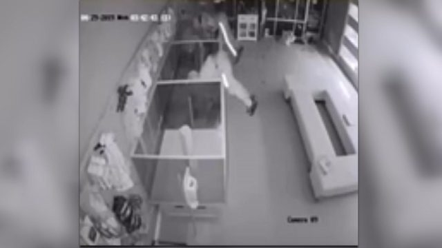 Heist caught on camera: Thieves make off with $44,000 worth of puppies,…