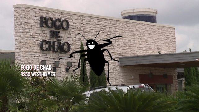 Restaurant Report Card: Roach feces, rodent droppings found at Houston eateries