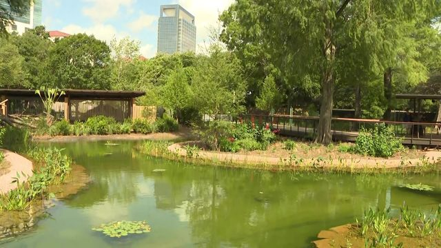 10 photos to highlight Houston Zoo's wetlands exhibit opening