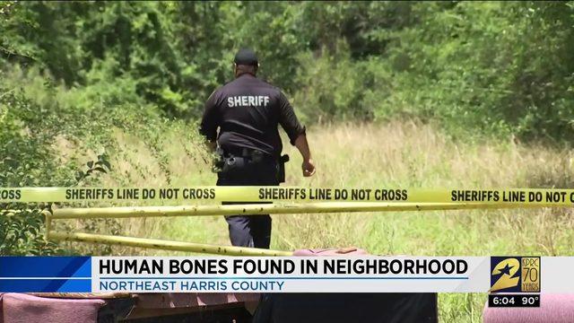 Human bones found in neighborhood
