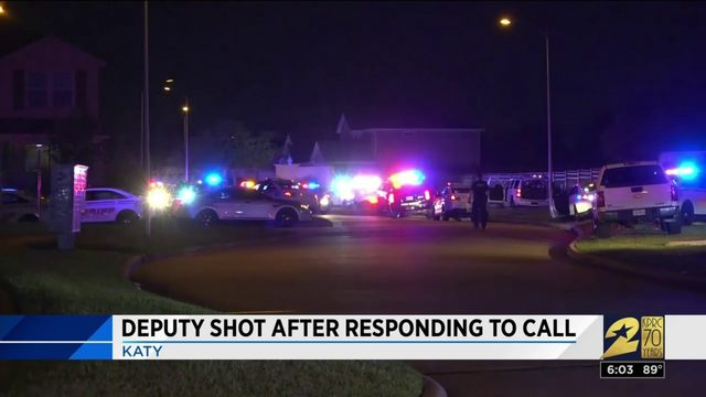 Deputy shot after responding to call