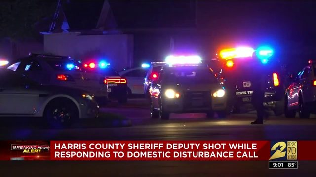 HCSO deputy shot while responding to domestic disturbance call