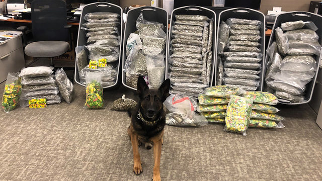 228 pounds of pot, 70 pounds of THC gummies found during traffic stop on…