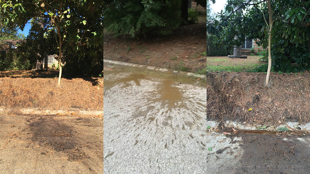 Stinky mystery: Human waste being dumped in Oak Forest neighborhood
