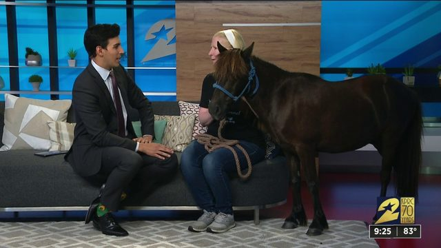 Bluebonnet Equine Human Society stops by KPRC2