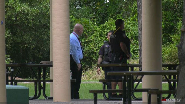 Investigation underway after human bones discovered at Channelview park,…