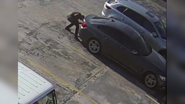 Wannabe thieves struggle to break into man's trunk