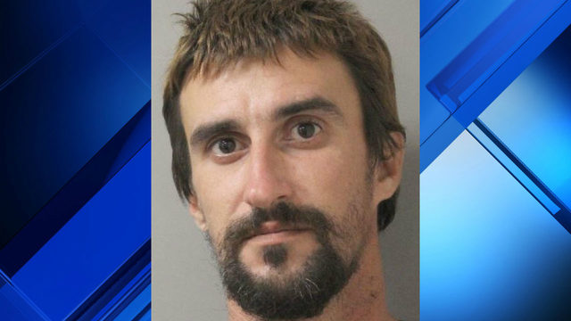 Man accused of assaulting grandmother as she was attacked by dogs