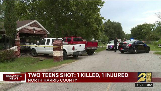 Two Teens Shot: 1 Killed, 1 Injured