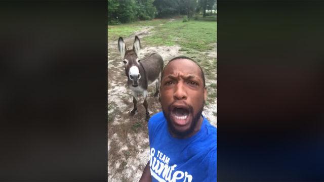 VIDEO: Man, donkey sing hilarious version of 'Lion King' theme 'Circle of Life'