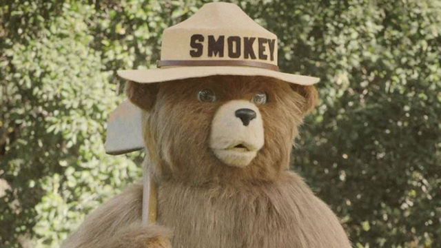Smokey Bear, fire prevention icon in US, to turn 75