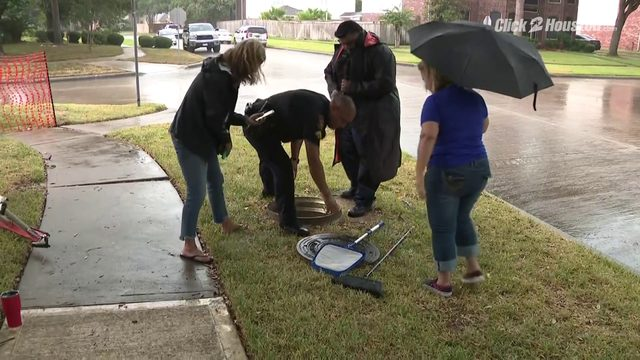 Attempted rescue of ducklings in NW Harris County