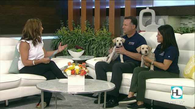 Save on electricity and support animals in need | HOUSTON LIFE | KPRC2
