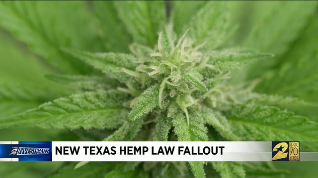 Fallout with new Texas Hemp law