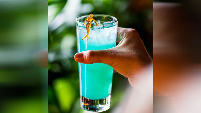 Montrose bar to serve CBD-infused cocktail. Guests can now 'chill out'