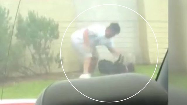 Video of dog being punched, kicked sparks cruelty investigation