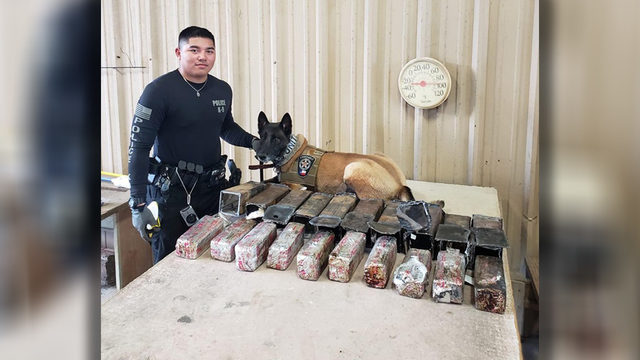 Authorities seize 24 pounds of cocaine, fentanyl during traffic stop in…