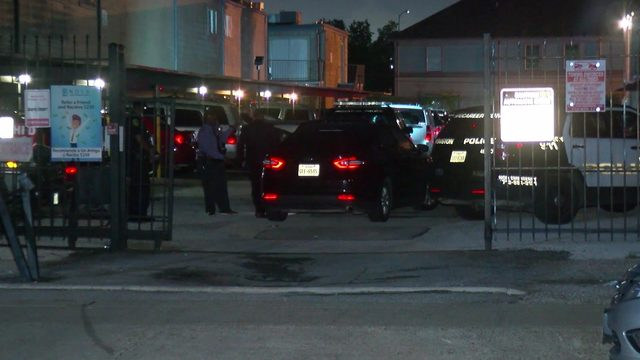 Woman found shot to death in apartment parking lot