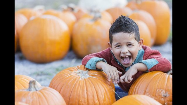 10 Houston events that are perfect for your family this Fall