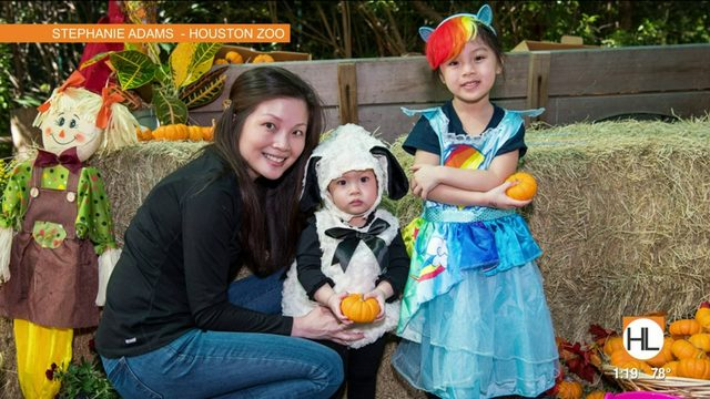 Family-friendly Halloween every weekend of the October at the Houston…