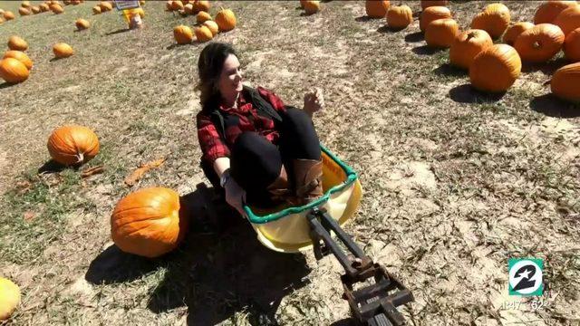 Fun at Dewberry Farms in Brookshire, Texas | HOUSTON LIFE | KPRC 2
