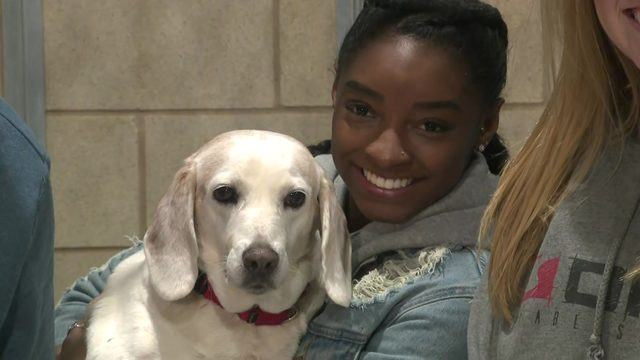 Simone Biles in the doghouse: Gymnast helps raise money for animal shelter