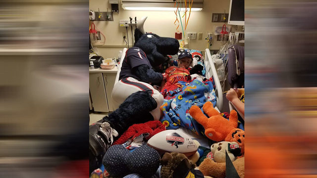 Texans mascot, Toro, comforts young cancer patient during hospital visit
