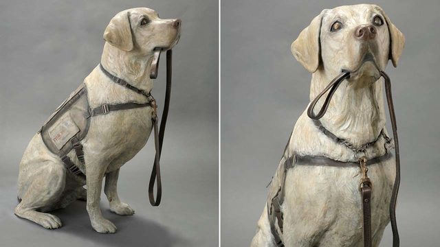 Former President George H.W. Bush's ex-service dog Sully honored in…